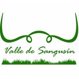 """Terneras """"Valle de Sangusín"""""""